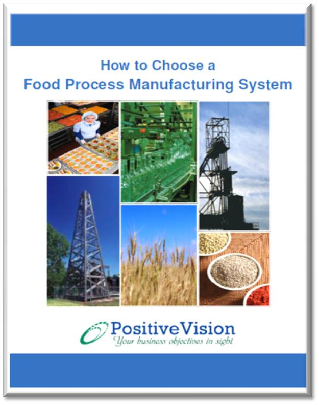 PositiveVision Process Manufacturing Success Kit Whitepaper Image